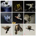 120_birds