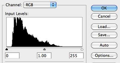 在Photoshop里使用12档的色调范围调整肖像照的直方图