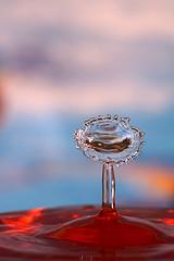 Steve P.使用一只闪光灯拍摄的漂亮的红色水滴照片