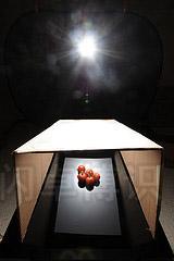 大卫·豪比使用斜切的盒子改变为西红柿打光的效果布光图