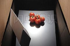 大卫·豪比为西红柿前方加上反光板的布光图