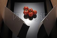 大卫·豪比为西红柿前方两侧都加上反光板的布光图