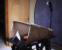 大卫·豪比从侧面角度拍摄为西红柿打光的布光图