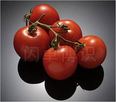 大卫·豪比使用DIY布光工具拍摄的西红柿