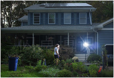 大卫·豪比在测试红外引闪器时拍摄到妻子Susan在花园工作图