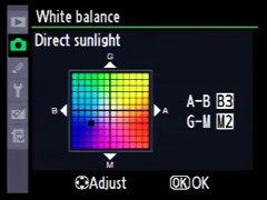 尼康相机上现场光颜色偏差信息显示界面