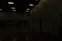 大卫·豪比拍摄自动模式下的体育馆现场光的亮度
