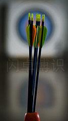大卫·豪比通过给不同层面打光拍摄的在箭筒里的箭