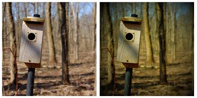 使用富士X100s玩具相机滤镜1:1格式拍摄的图片