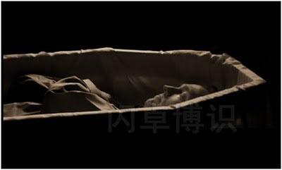 大卫·豪比拍摄的棺材中的Malvolio
