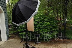 大卫·豪比在他家的绿植前为Erin Holmes拍摄的头像照的布光图
